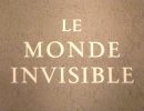 Pierre Arvay Le Monde invisible