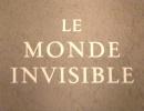 Pierre Arvay Le Monde invisible